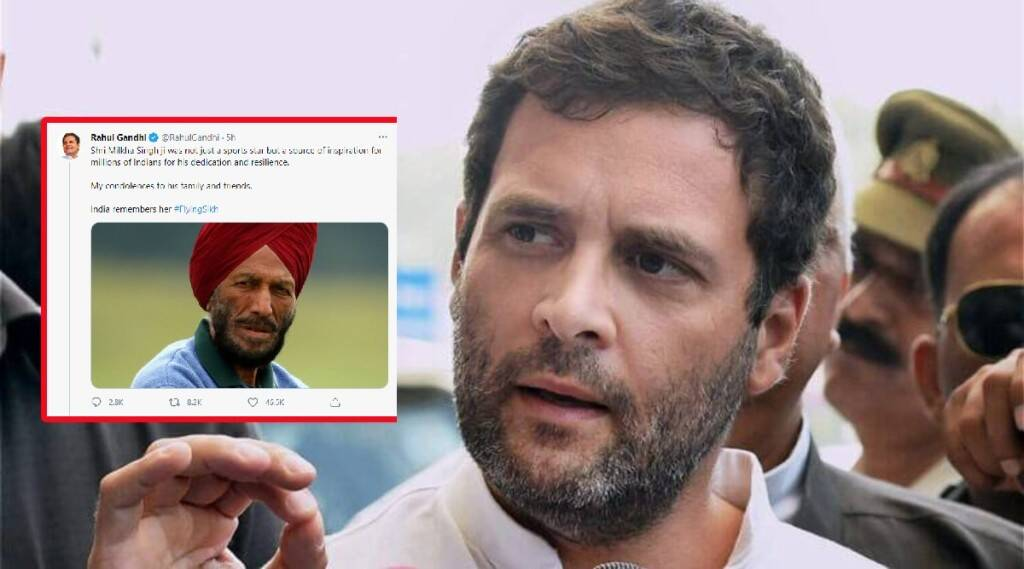 milkha singh news, Rahul gandhi tribute milkha singh, Rahul gandhi tweet