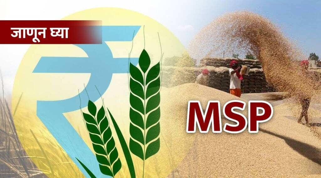 What is the MSP that is the root of the farmers' movement?