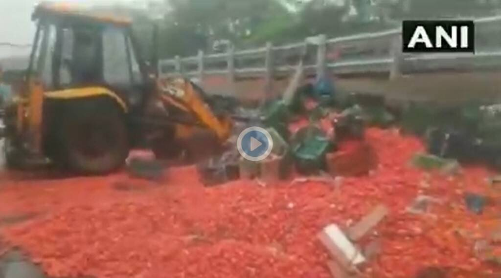 20 tonnes of tomatoes