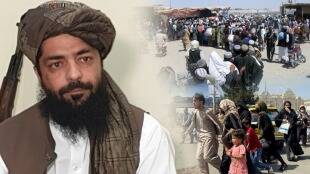 sharia law in afghanistan under taliban