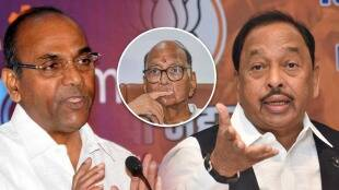 BJP, Narayan Rane, Shivsena, Anant Geete, NCP, Sharad Pawar, CM Uddhav Thackeray