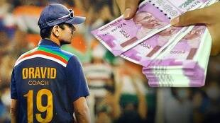 rahul dravids salary as a new head coach of indian cricket team